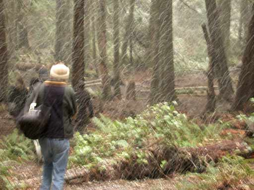 It doesn't snow on Pender Island very often but even when it does dedicated disc golfers continue to play.