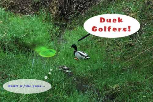 Duck Golfers!